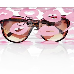GlassesInPouchFront6-bs-1621